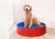 Fuloon Foldable Pvc Pet Play Swimming Pool Bathing Tub Bathtub Dogs Cats Washer