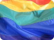 Rainbow Flag Size 3ftx5ftft Beautiful Durable Premium Nylon Gay Pride Flag With