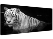 Large Black and White Canvas Wall Art of a Tiger - Animal Canvas Pictures - 1020 - Wallfillers®