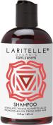 Laritelle Organic Travel Size Shampoo 60ml | Fortifying, Strengthening & Rejuvenating | Stops Hair Shedding, Promotes New Hair Growth | Ayurvedic Herbs, Lavender, Ginger, Rosemary, Patchouli & Cloves