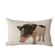 Pillow Case,TOPUNDER Cute Rectangle Sofa Bed Decoration Festival Cushion Cover D