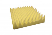 Rehabilitation Advantage Convoluted Egg Crate Foam Cushion 10cm X 46cm X 46cm , 0.4kg