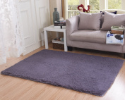 Living Room Rug, CWKTITI Super Soft Indoor Modern Shag Area Rugs Bedroom Rug for Children Play Solid Home Decorator Floor Rug and Carpets 4- Feet By 5- Feet, Grey Purple
