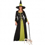 Carnival Toys 82059 Witch with Hat Fancy Dress Costume – Medium/Large, Black/Green