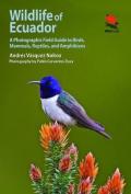 Wildlife of Ecuador