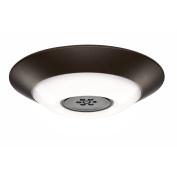 Haiku Home Premier LED Indoor/Outdoor 2200-5000K Lighting, Oil Rubbed Bronze