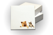 """Memo Paper Cube Note 3.5"""" x 3.5"""" (90 x 90 mm), 300 white tear-off pages NOT STICKY, glued on one side, 1 Pad/Pack, CAT and DOG ornaments"""