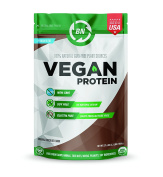 Organic Vegan Protein Powder - 27g Protein, RAW, Certified Organic, NON-GMO, Fully Natural Plant based – No Dairy, Gluten or Soy – 26 Servings – Rich Chocolate Flavour – Made in USA