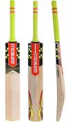 Grey-Nicolls Powerbow 5 GN+ English Willow Cricket Bat Full Size Short Handle