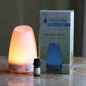 Smiley Daisy Aromatherapy Diffuser Bundle with 5 ML 100% Eucalyptus Essentila Oil