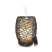 Spa Room Enlighten Wire Framed Encased Diffuser with Remote