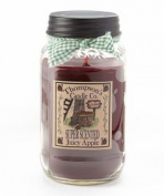Thompson's Candles Mason Jar Candle-Juicy Apple