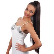 Vivica A Fox New Futura Synthetic Fibre Hair Collection PB-Rose Pocket Bun, 1B, 210ml