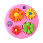 HENGSONG Silicone Cookie Mould Flower Shaped Biscuit Moulds Fondant Chocolate Mould Baking Tool