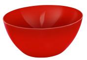 Rotho 17179 Salad Bowl Salad Bowl, Other, Red)