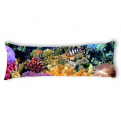 Ailovyo Sea Creatures Silky Soft Satin Pregnancy Body Pillow Cover Pillowcase, 50cm x 140cm
