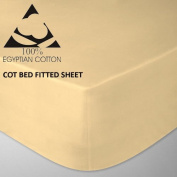 Goldstar® Latte Cot Bed Fitted Sheet 100% Egyptian Cotton 200 Thread Count, 70 x 140cm