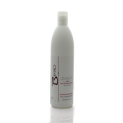 Bebo Line Wax Reconstructor For Dry hair With Semi Di Lino Leave-in 470ml