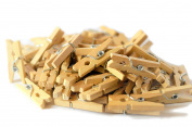 100-Pack of 1 Inch (25mm) Mini Wooden Clothespins for Photo Paper Craft DIY natural polished hardwood