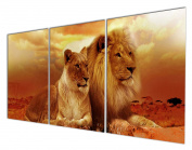 Gardenia Art - Animal World Series Wild Lioness and Lion Canvas Prints Modern Wall Art Paintings Animals Artwork for Room Decoration,30cm x 41cm Per Piece, Stretched and Framed