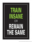 Train Insane or Remain the Same 46cm X 60cm Poster