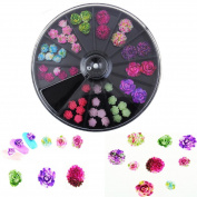 Alonea 3D Rose Flower Nail Art Charm Beads Colourful Resin Nail Tips Manicure Wheel