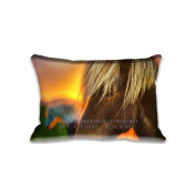 Standard Size Home Decorative Pillow Case Cushion Flaxen Horse At Sunrise Pillows Shams 20 X 30(Two Sides)Sweet Home Decorations