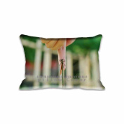 Friendship Pillow Cases Covers King Size Comfortable Rectangle PillowCases 50cm x 80cm Pillow Protector