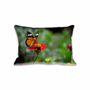 Beautiful Butterfly On Flower Pillow Cover & Pillow Cushion Fancy Design Pillow Cases With Zipper 50cm x 80cm