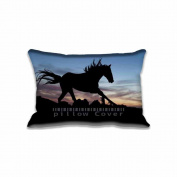 Zippered Horse in the Night Pillowcase Standard Size Pillow Cases Protector 50cm x 80cm (Twin Side)In Home & Kitchen