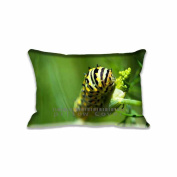 Caterpillar Pillow Case Cover With Zipper Indoor/Outdoor Standard Pillow Cushion Covers 50cm x 80cm