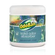 OdoBan 410ml Savannah Mist Solid Odour Absorber