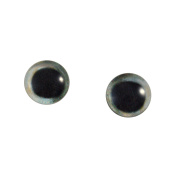 8mm Glass Skipjack Tuna Fish Eyes Pair Taxidermy Sculptures or Jewellery Making Crafts Set of 2