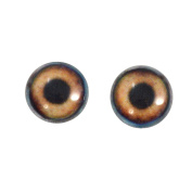 16mm Glass Brown Dog Eyes Animal Pair Realistic Taxidermy Sculptures or Jewellery Making Crafts Set of 2