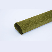 FloristryWarehouse Mid Green 565 Crepe paper roll 50cm wide x 2.4m long. Top quality Italian paper craft