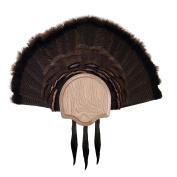 Walnut Hollow Country 3 Beard Turkey Display Kit, Solid Oak for Gun & Bow Hunters