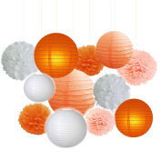 Fascola Pack of 12 White Peach Orange Paper Crafts Tissue Paper Honeycomb Balls Lanterns Paper Pom Poms Birthday Wedding Party Decoration