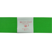 Alberts Large Crepe Paper - Light Green - 50cm x 250cm