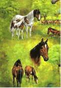 Horses On Pasture Gift Wrapping Paper -Two 70cm x 1.8m Sheets