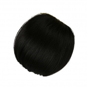 Remeehi Real Human Hair Bangs Extensions Fashion One Piece Clip in Hair Bangs Invisible Fringe Flat Bangs Black