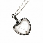BESTOYARD Dandelion Seed Necklace Vintage Necklace Gift Jewellery Decoration
