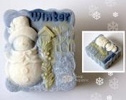 SoapRepublic Winter Silicone Soap Mould + a free soap stamp