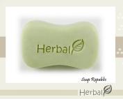SoapRepublic Herbal Acrylic Soap Stamp / Cookie Stamp