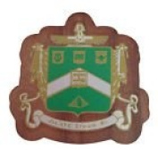 Delta Sigma Phi Mini Single Wood Crest Fraternity Made of Wood for Paddle Mascot Board