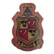 Delta Chi Mini Single Wood Crest Fraternity Made of Wood for Paddle Mascot Board