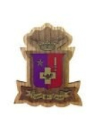 Sigma Phi Epsilon Double Raised Wood Crest Fraternity Made of Wood for Paddle Mascot Board