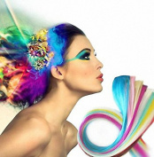 Salmony 12pcs Colourful Clip In Hair Extensions Synthetic Straight Coloured Hairpieces on Cosplay Fashion party Multicolor Styling Accessories