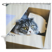 HANHAOKI Funny Cat in Box Polyester Fabric Bathroom Shower Curtain liner for Kids 180cm x 180cm
