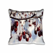 Frozen Red Berries,Winter Pattern Design Throw Pillow Case Cushion Cover Home Sofa Decorative 41cm x 41cm