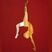 Gymnast Mirror 35cm x 15cm